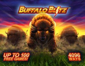 buffalo-blitz1