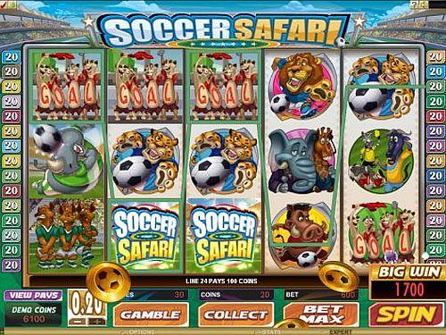 soccer-safari1