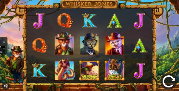 Whisker Jones Vorschau