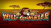 Wild Gambler im Casino Euro