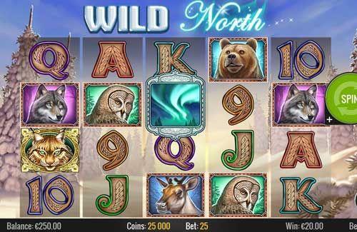 wild-north1